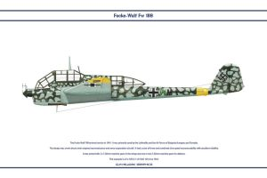 Fw 189A Germany NJG100 by WS-Clave