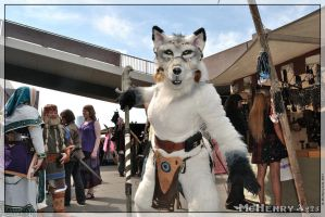 Youa RPC 2011 - 03 by poisonmilow