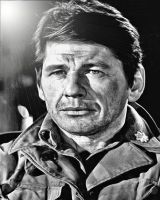 Charles Bronson by montag451