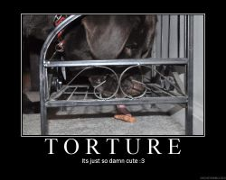 TORTURE by BiOzZ