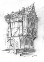 Cartoonschool homework: House by Holly-Toadstool