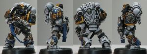 Heralds of Light Sternguard by DarkKnightCuron