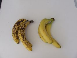 Bananas - ripe and fresh 1 by dtf-stock