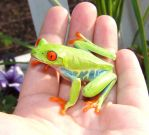 Mr. Tree Frog by skater4life509