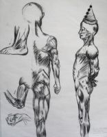 Practica dibujo musculo by WENDX14
