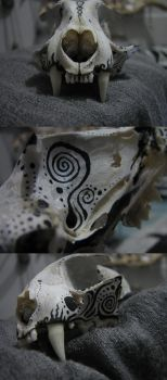skull painting, cat by Miss-Little-Mouse