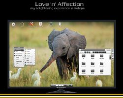 Love 'n' Affection - my e17 desktop on Isotope by rvc-2011