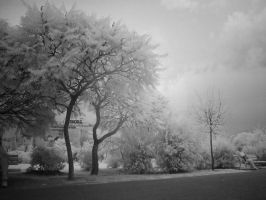 infrared unirii by tiberiunedelea