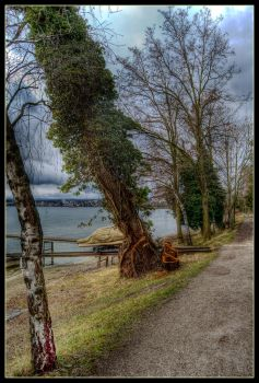 HDR Preverenges 27 by sandpiper6