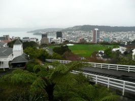 Wellington by VikKill
