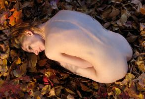 Nude in leaves 8 by carvenaked