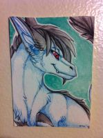 Dragoncat ACEO by nightspiritwing