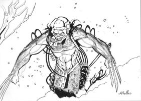 Weapon X:ink by shiprock