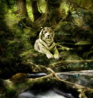 The Tiger Inside by Kerri--Jo