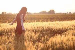 fields of gold by TheEmGee