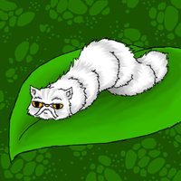 CATerpillar by Uskall