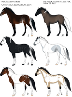 OC Horse Adoptables v.2 (ALL SOLD) by Whisperah