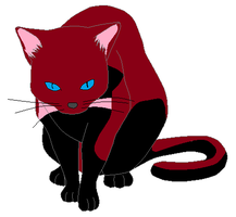 Cat adoptable 15 points CLOSED! by GolfingQueen