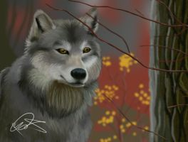 Wolf realism attempt by Gashu-Monsata