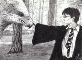 Harry meets the Hippogriff by sweeneylover18