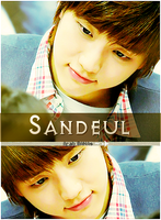 happy birthday to Sandeul  B1A4 -1 by h-r158