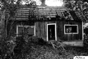 The cottage. by netza