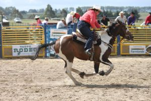 Taupo Rodeo 35 by Sooty-Bunnie