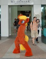 Pony Costume 'Boomerang Bugger' Aussie Pony 2012 by AtalontheDeer