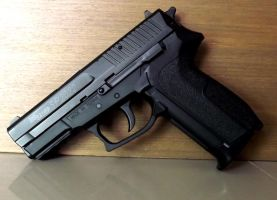 Sig Sauer SP2022 by sudro