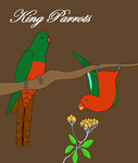 King parrots by bryce-lover