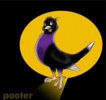 POOTER by gravity1046