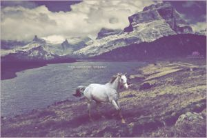 Runaway by rampagegraphics