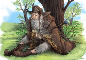 Hobbit- Radagast The Brown by MiDooMoo