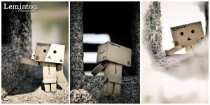 Danbo - Climbs by Leminton