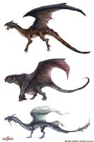 Dragon Lineup by Concept-Art-House