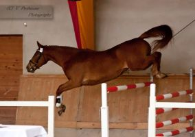 Freejumping Championship 2014_285 by CalyHoney