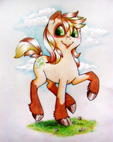 Free Pony for cinnamongirljet by WalnutSprout