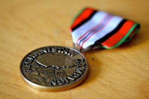 Campaign Medal by soldierM16