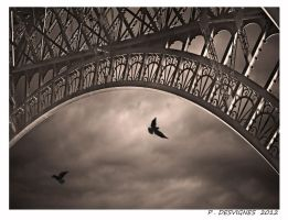 paname au noir by bracketting94