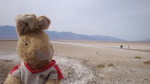 Badwater Bunnies by fattycorpuscle