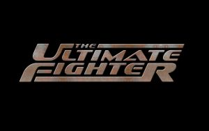 The Ultimate Fighter Rust by TechII
