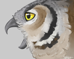 Great Horned Owl by Alithographica