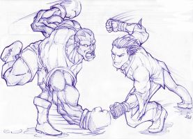 street fighter vs tekken r8 by zimil