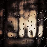 teardrops of spider by utopic-man