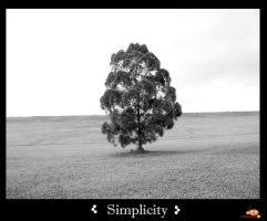 Simplicity by ruinlord