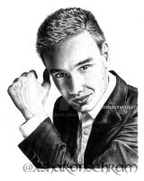 Liam Payne by Sharsel