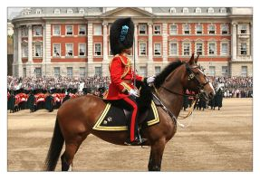 Trooping The Colour - 1 by syphonvector