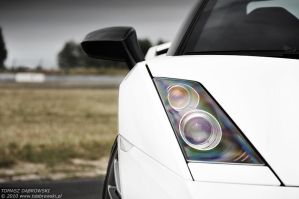 Gallardo Superleggera - 5 by Dhante
