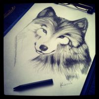 Wolf by Catherine2501