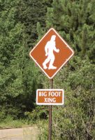Bigfoot is REAL by Tinkered